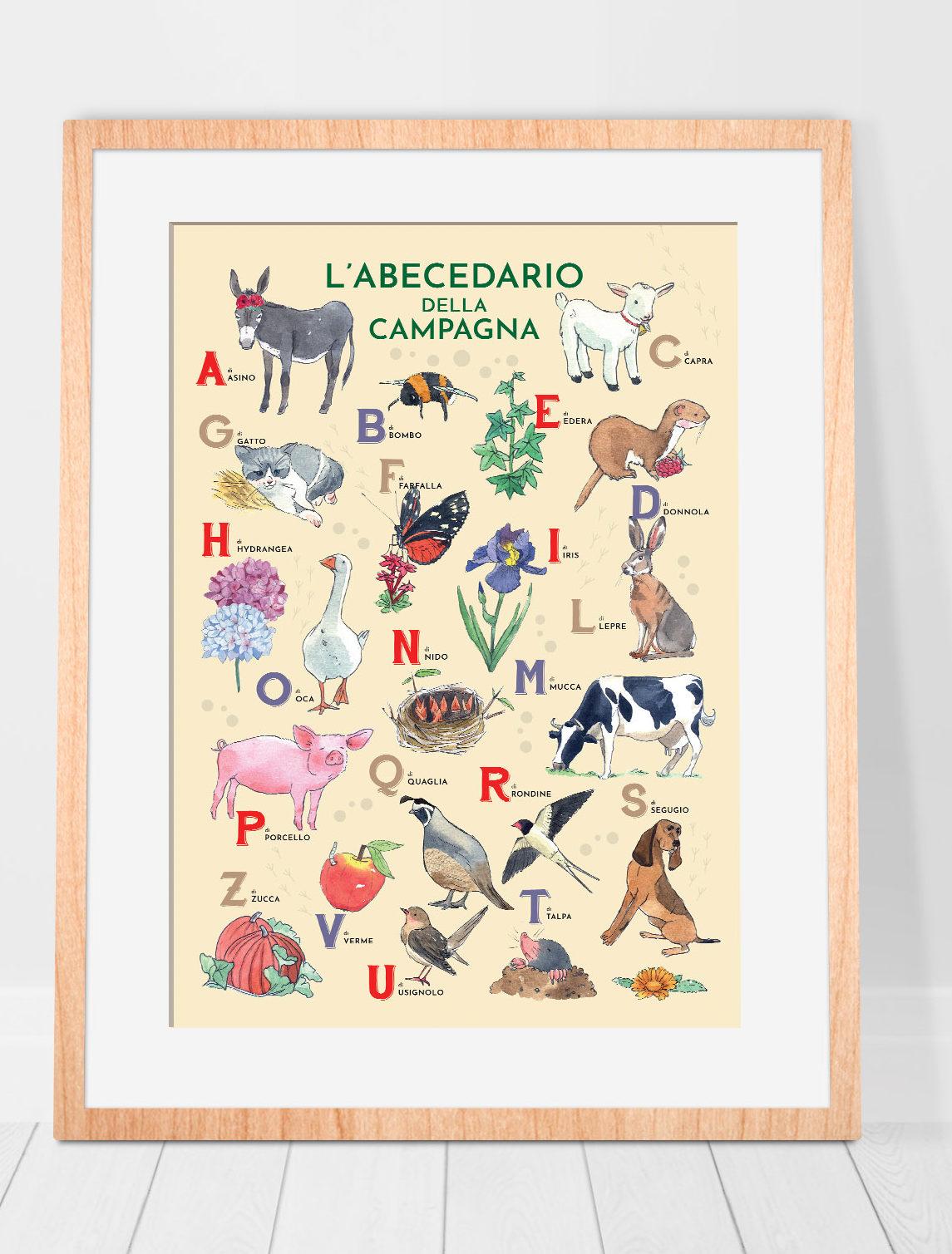 alphabet illustrated for children