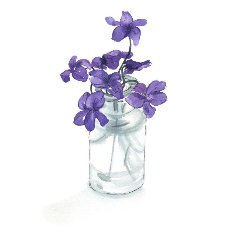 Violets flowers vase
