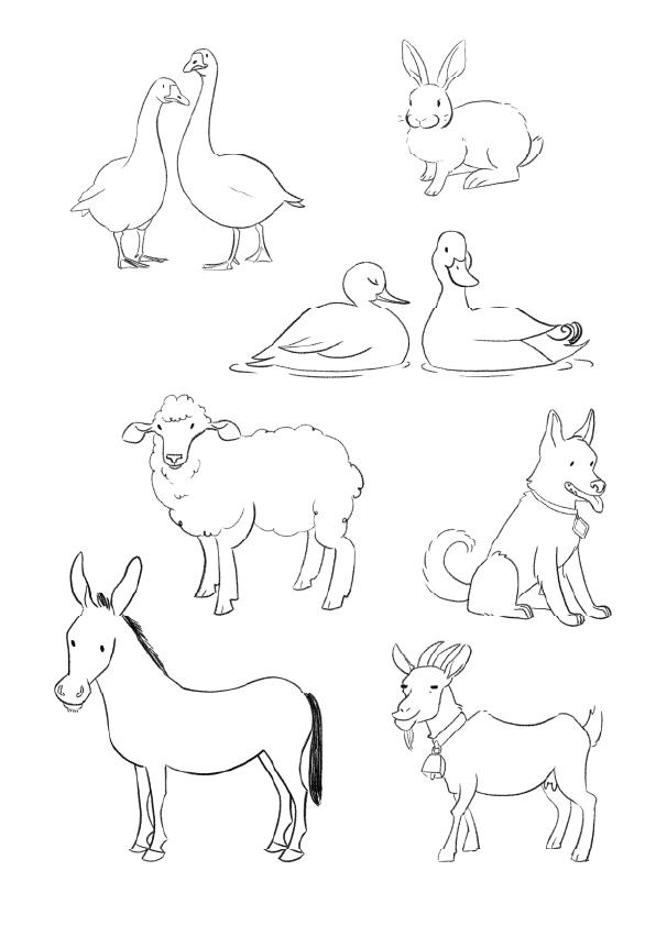 ILLUSTRAZIONE ANIMALI LINDA