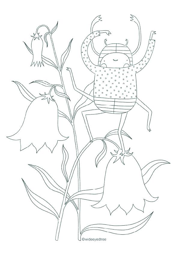 Claudia Voglhuber illustration