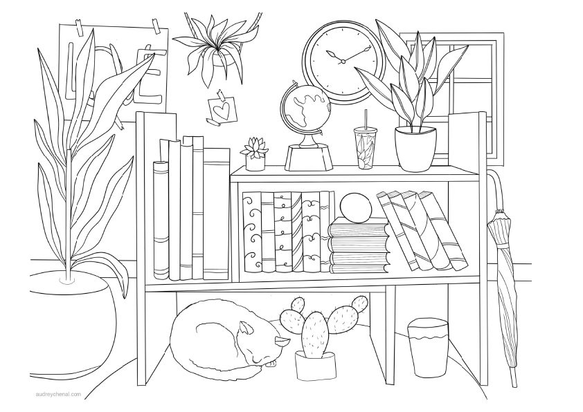 room shelf drawing