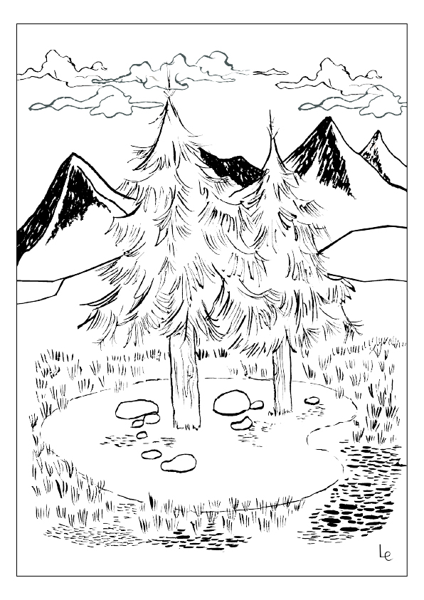 pine trees drawing