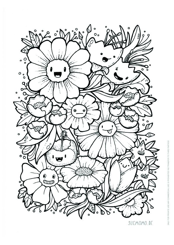 daisies and flowers