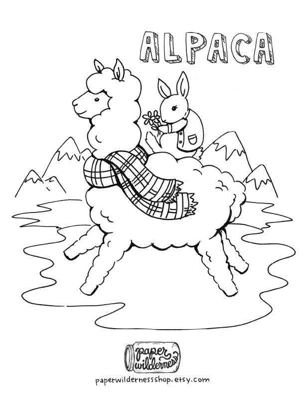 alpaca drawing