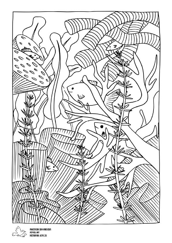 sea floor drawing