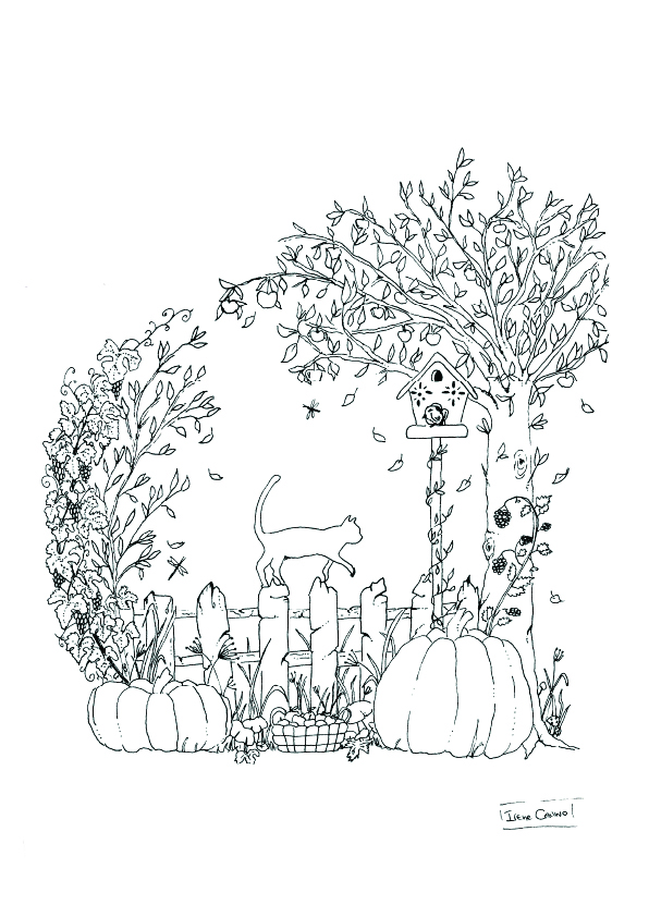 pumpkin and cat on a fence