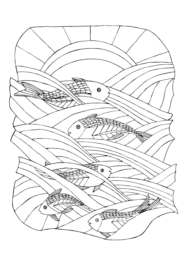 fishes in sea