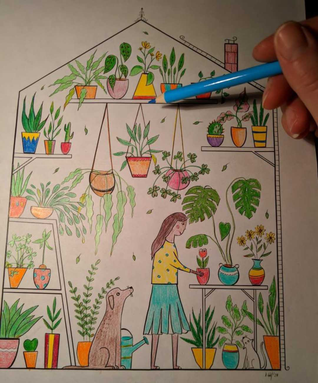 greehouse colored drawing
